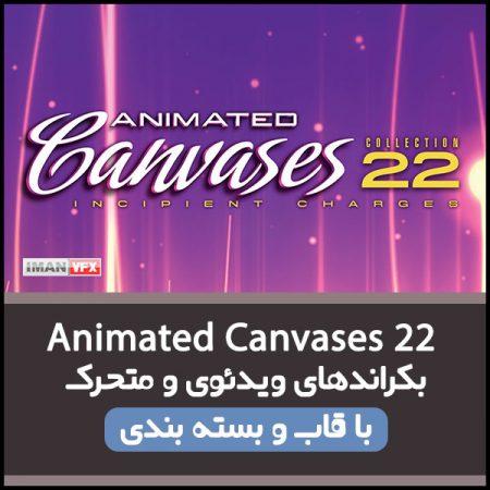 بکراند ویدئویی Animated Canvases 22
