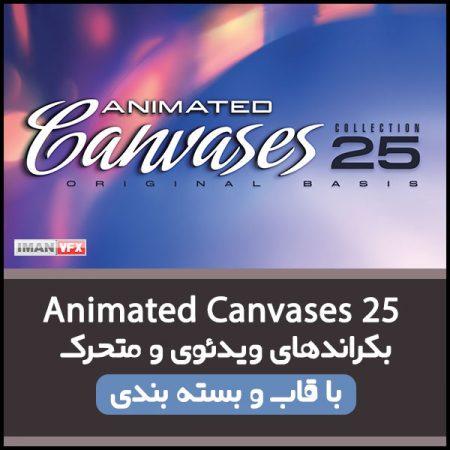 بکراند ویدئویی Animated Canvases 25