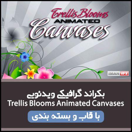 بکراند گرافیکی Trellis Blooms