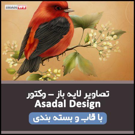 تصاویر وکتور و لایه باز Asadal Design
