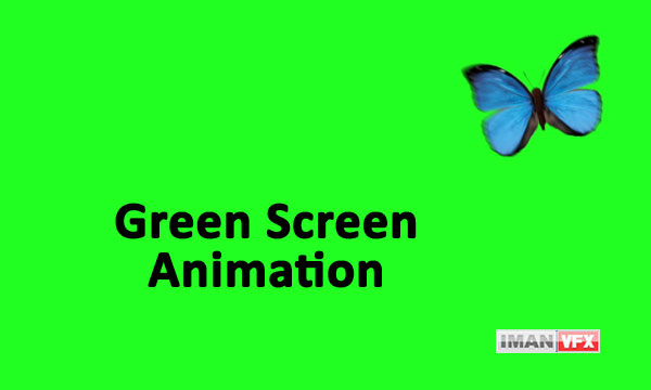 فوتیج کروماکی پرده سبز پروانه