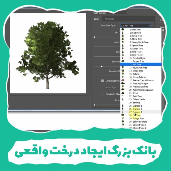 آموزش فتوشاپ ، گالری ایجاد درخت